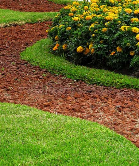 Valley Clean-up Services   Landscape Architecture