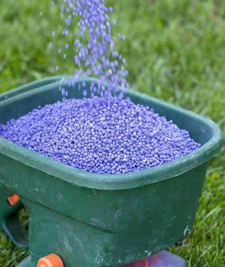 Valley Clean-up Services   Lawn Fertilization