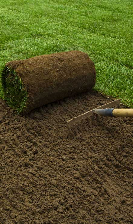 Valley Clean-up Services   Sod Installation