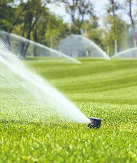 Valley Clean-up Services   Sprinkler Installation