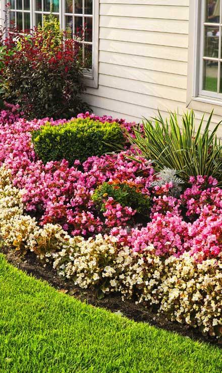 Valley Clean-up Services   Garden Design