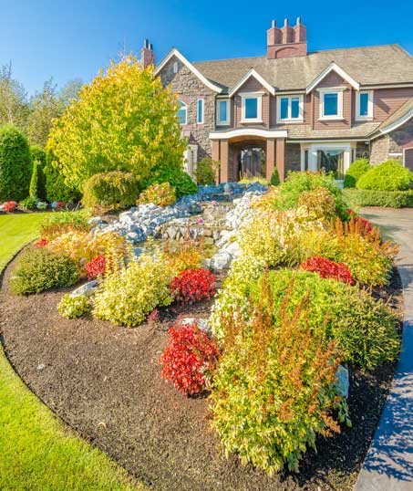 Valley Clean-up Services   Landscape Design