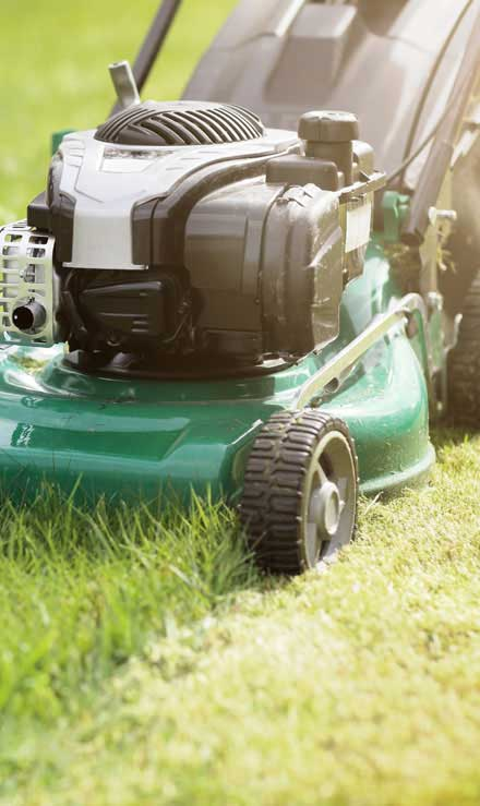 Valley Clean-up Services   Residential Lawn Mowing