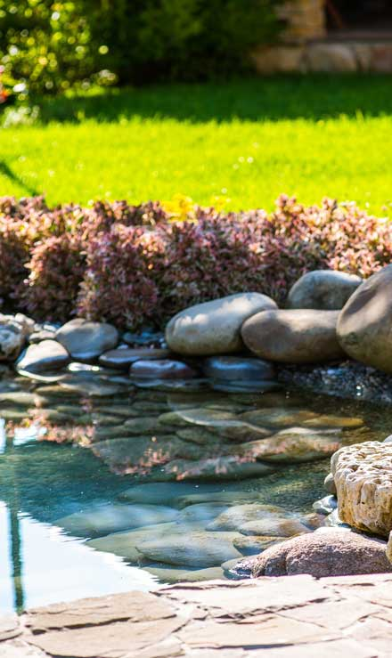 Valley Clean-up Services   Residential Water Features